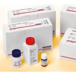 Albumin liquicolor (ALB)